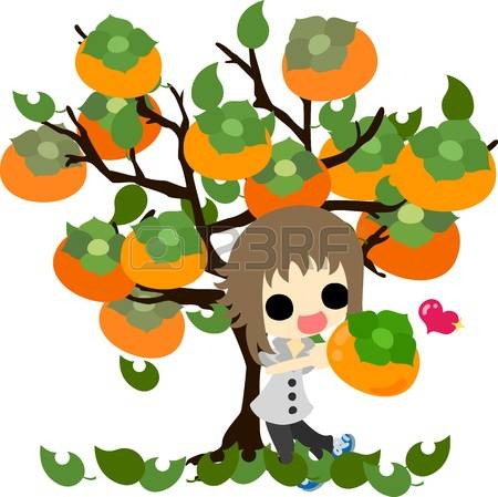 91 Persimmon Tree Stock Vector Illustration And Royalty Free.