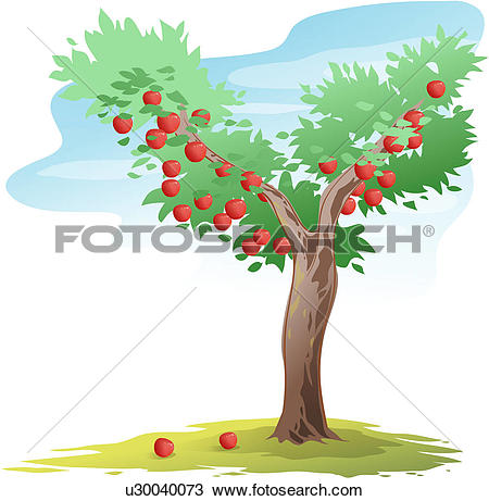 Clipart of plants, tree, fruit, persimmon, persimmon tree, trees.