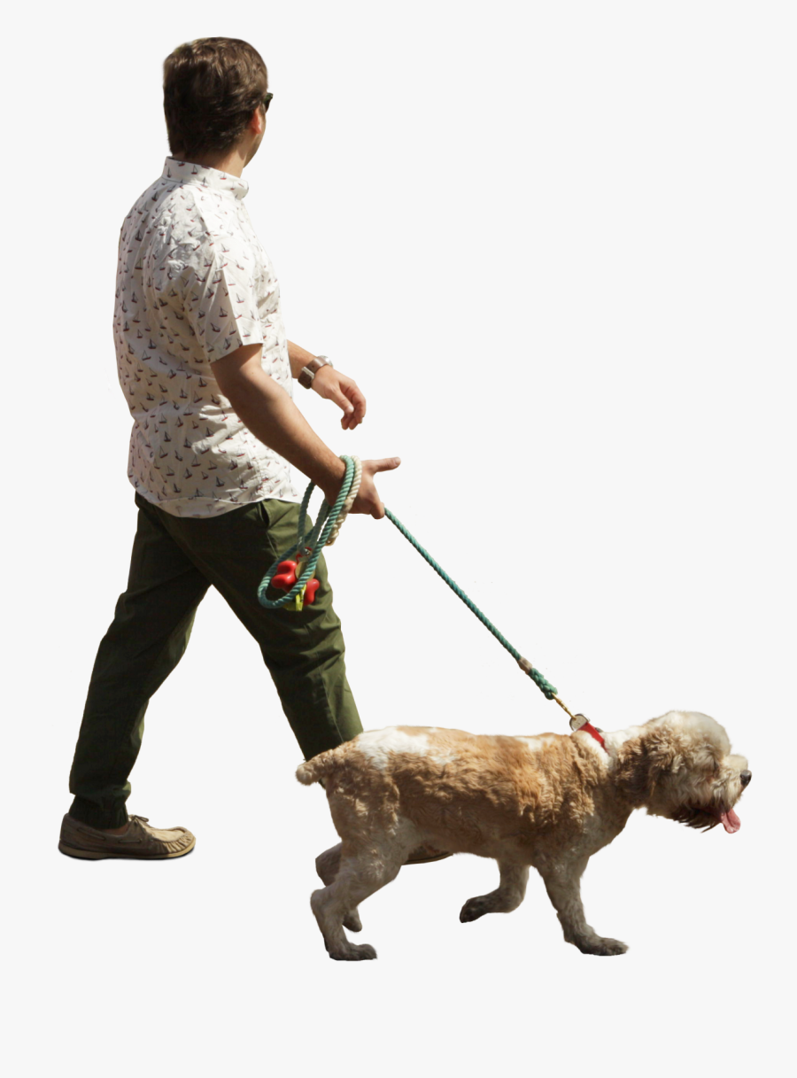 Person Walking Dog Png Clipart , Png Download.