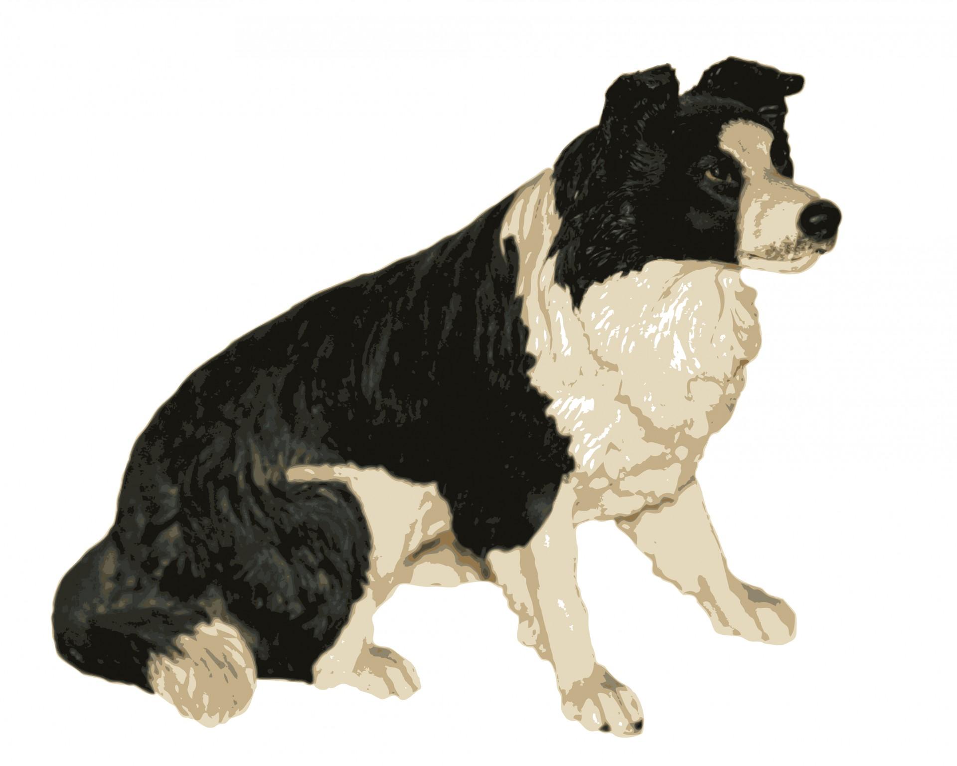 Dog Clipart Free Stock Photo.