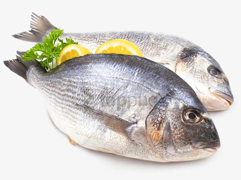 Free Png Fish Meat Png Png Image With Transparent Background.