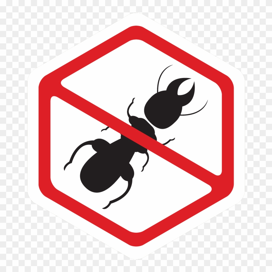 Residential Pest Control Service.