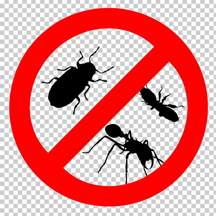 Cockroach Pest Control Bed Bug Termite PNG, Clipart, Animals.