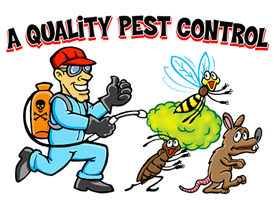 Pest Control in Orange County.