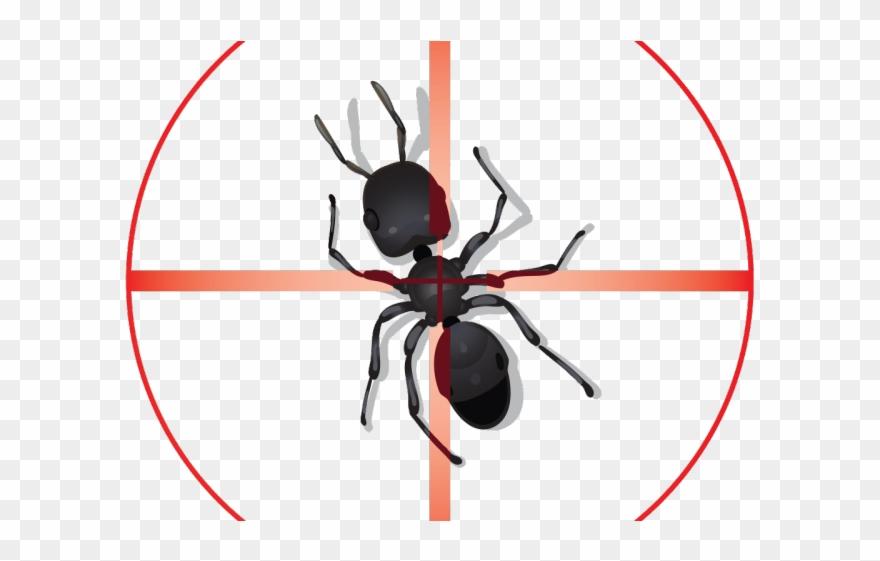 Ant Clipart Pest Control.