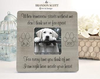 Pet Loss Pet Memorial Memorial Frame Pet Memorial Frame Cat Loss Cat Memorial Pet Sympathy Gift