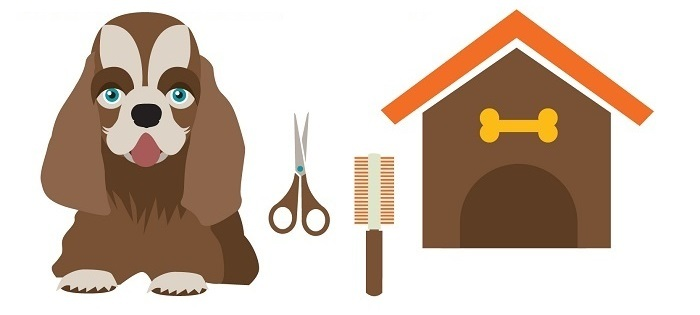 How To Groom A Dog With Scissors at Home in 12 Simple Steps.