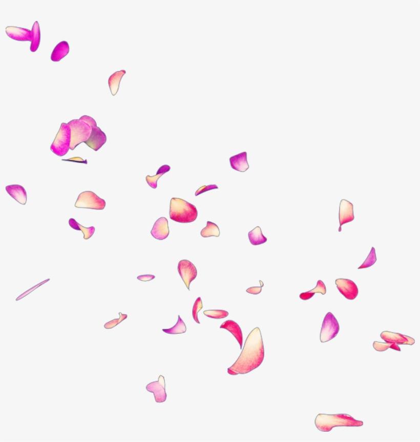 Petalos De Rosas Png Royalty Free.