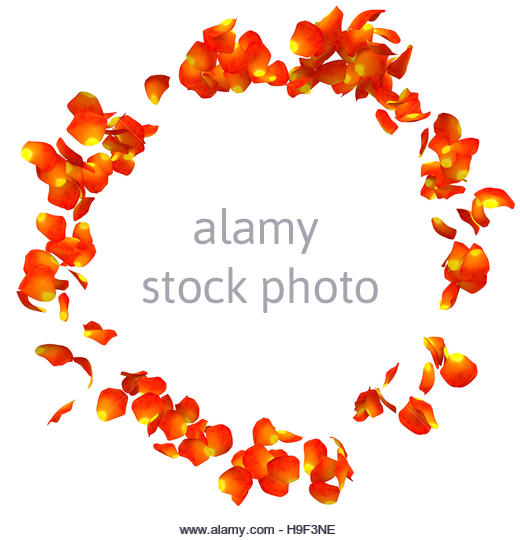 Petals Falling Cut Out Stock Images & Pictures.