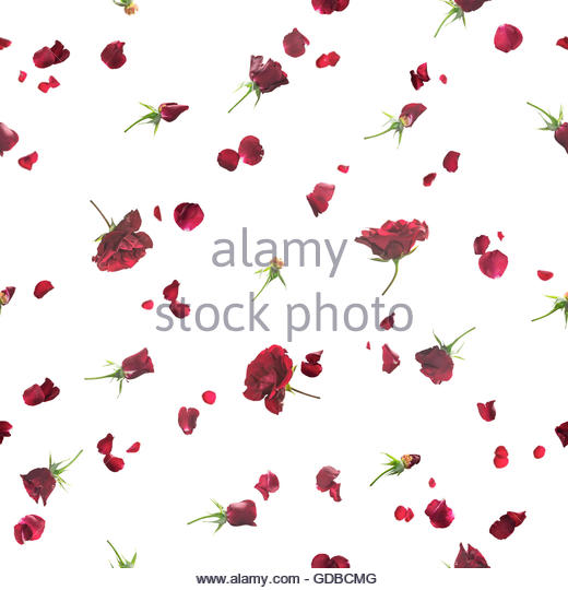 Repeatable Rose Petals In Red Stock Photos & Repeatable Rose.