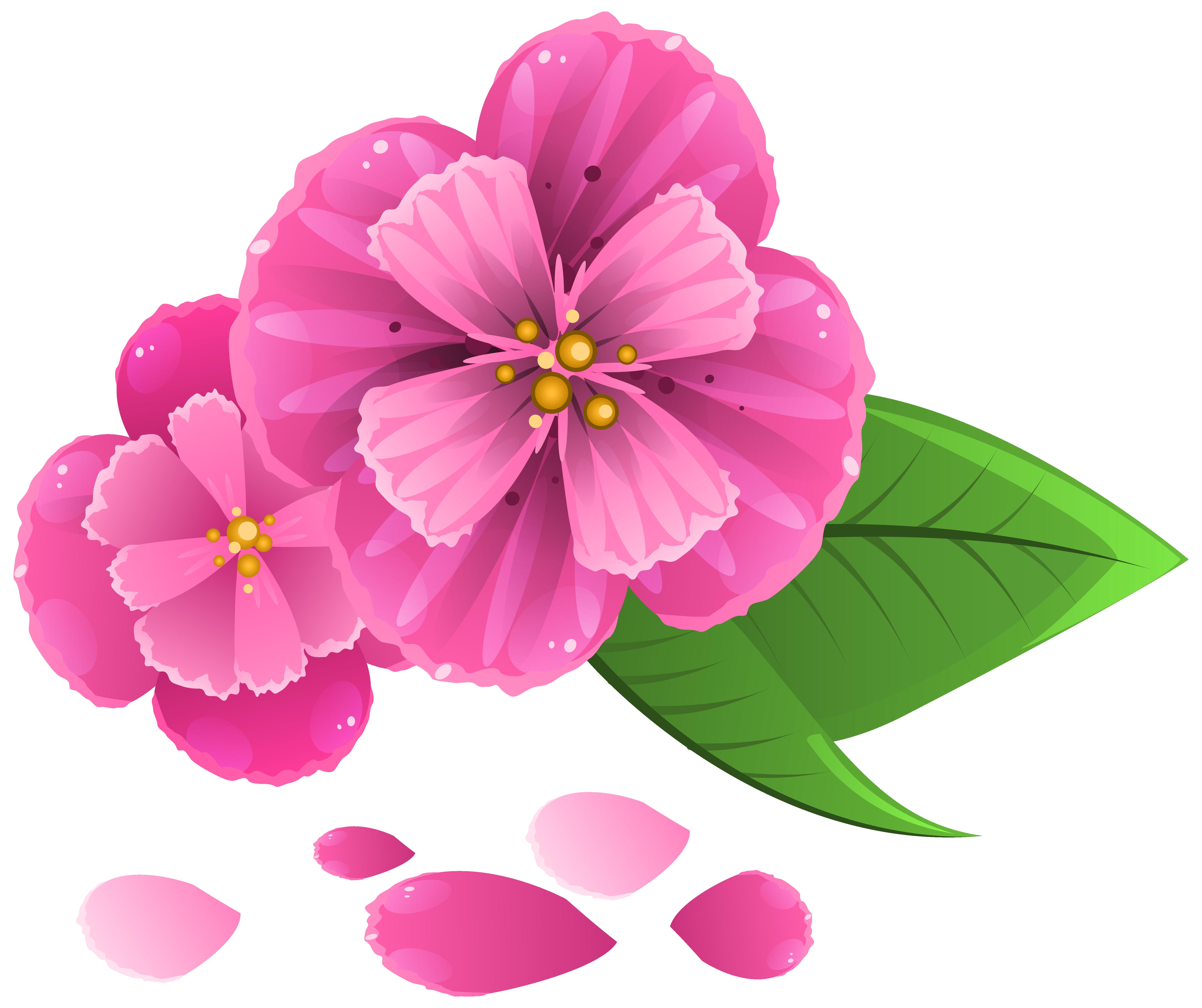 Pink Rose Petals Clip Art.