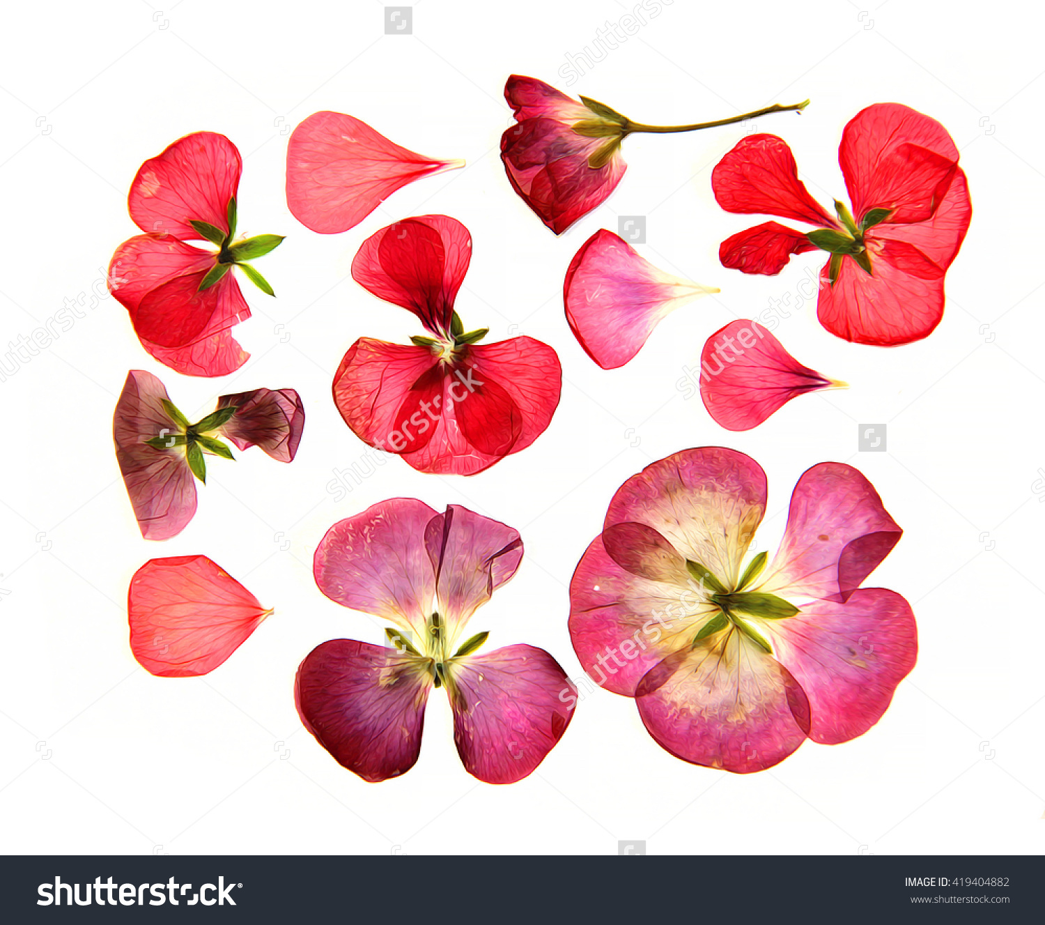 Oil Draw Red Pink Brown Pressed Stock Illustration 419404882.