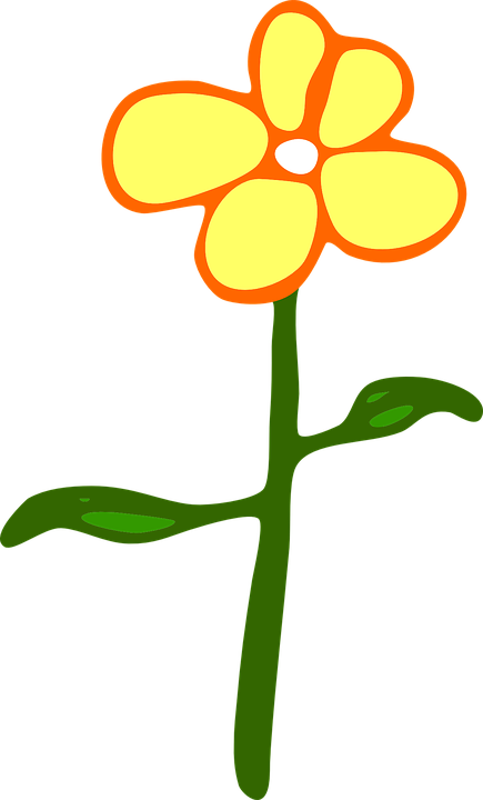 Free vector graphic: Flower, Plant, Daisy, Petals.