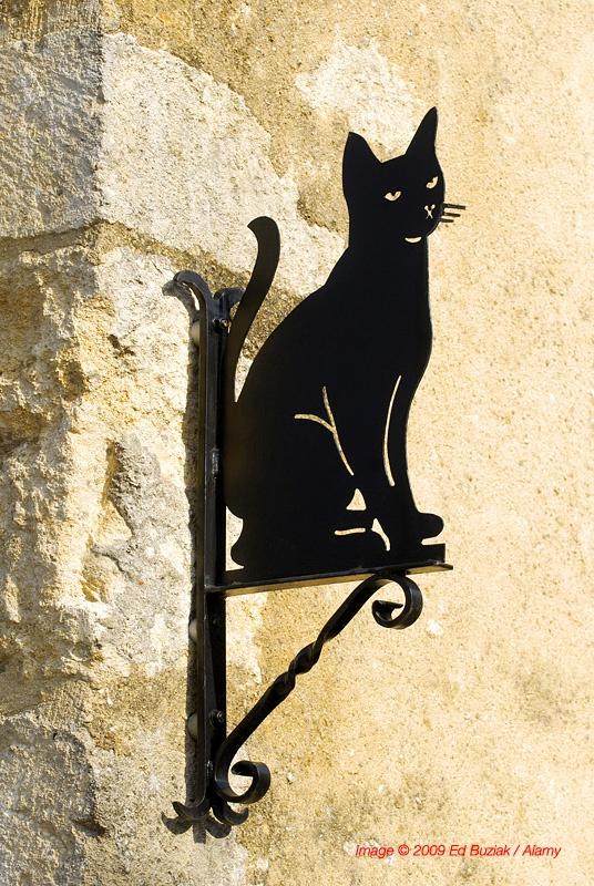 25+ best ideas about Black Cat Images on Pinterest.