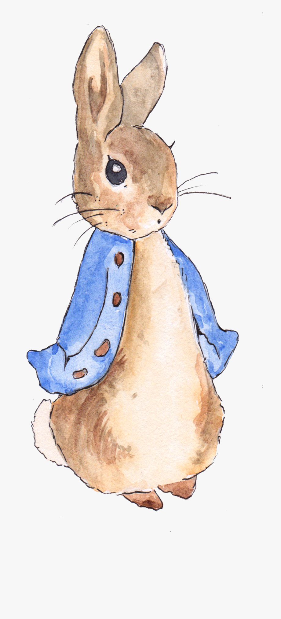 Peter Rabbit Png Free Library.