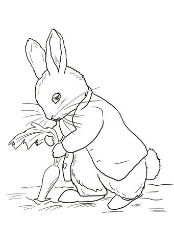 Peter Rabbit Stealing Carrots coloring page.