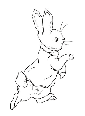 Peter Rabbit is Going Into the Garden coloring page.