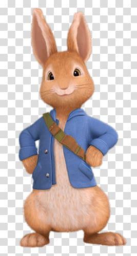 Brown rabbit, Peter Rabbit transparent background PNG.