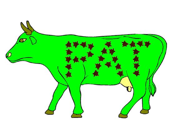 Cow Designs.