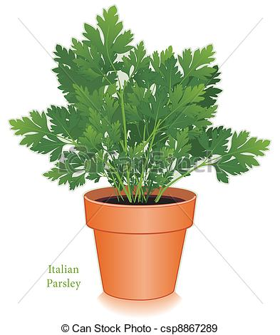Herbes Illustrations and Clip Art. 72 Herbes royalty free.