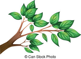 Petiole Illustrations and Clip Art. 201 Petiole royalty free.