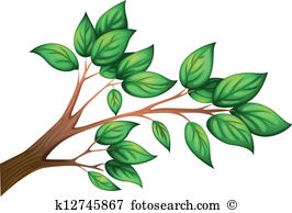 Petioles Clip Art Illustrations. 137 petioles clipart EPS vector.