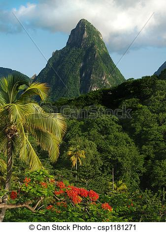 Stock Photography of Petit Piton St. Lucia.