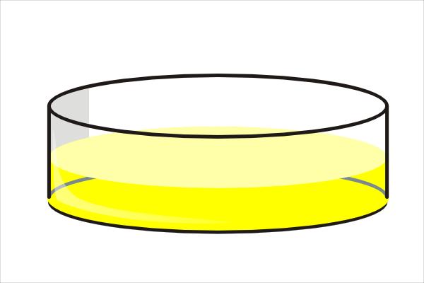 Yellow Petri Dish Clip Art at Clker.com.