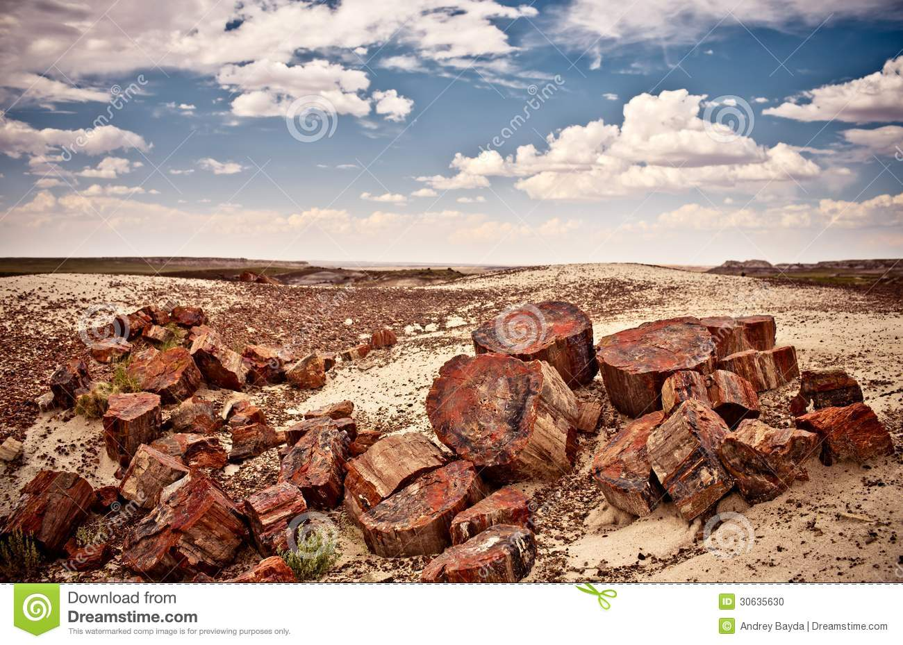 Petrified Forest National Park, USA Stock Photo.