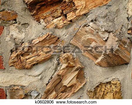 Stock Images of Petrified Wood textu k0602806.