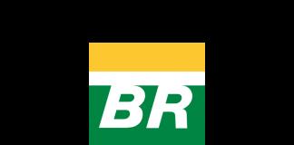 Download Free png Petrobras logo.