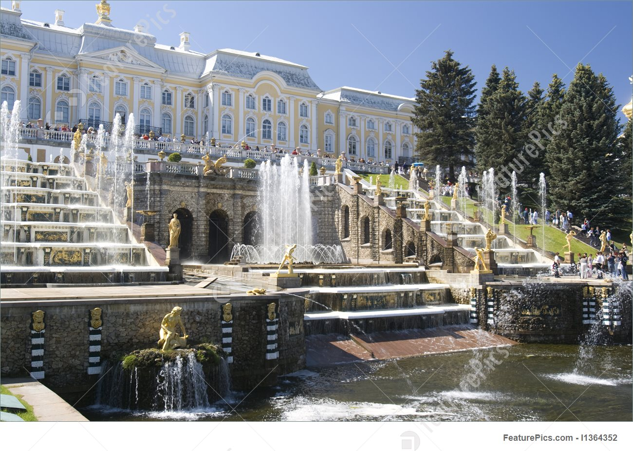 Fountain In Petrodvorets Picture.