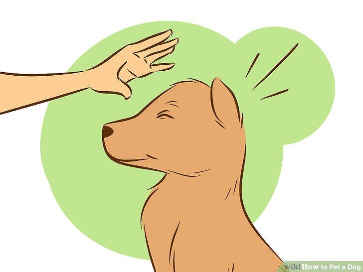 Dog Hand Clipart.