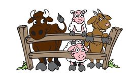 Download petting zoo animation clipart Horse Pig Clip art.