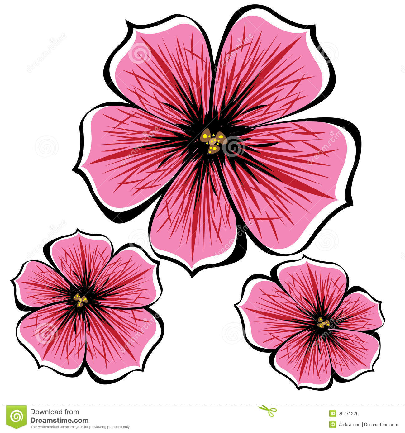 Pink Petunia Flowers Isolated White Stock Illustrations.