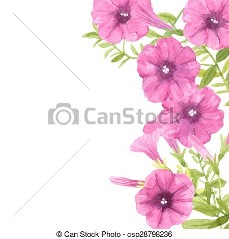 Petunias Illustrations and Clip Art. 316 Petunias royalty free.