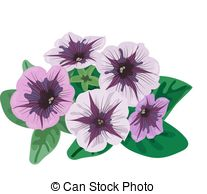 Petunia Illustrations and Clip Art. 318 Petunia royalty free.