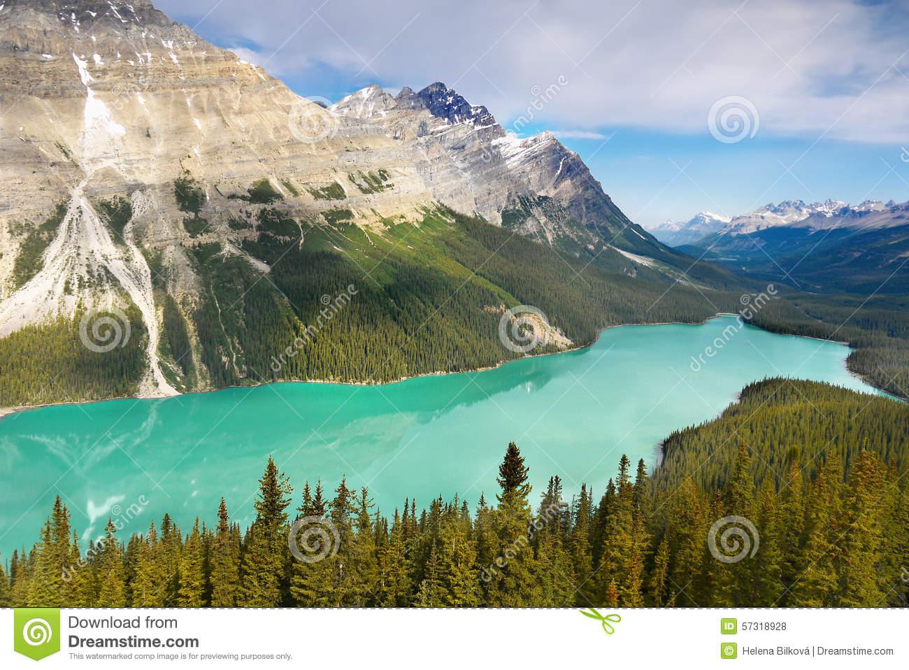 Peyto Lake, Banff National Park Stock Photo.