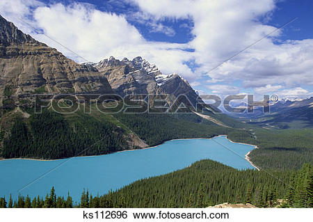 Stock Images of Peyto Lake (color caused by suspended glacial silt.