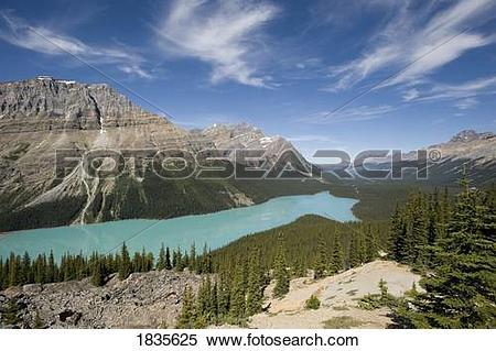 Stock Image of Peyto Lake, Banff National Park, Alberta, Canada.