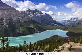 Pictures of Peyto lake.