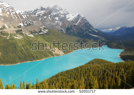 Summer View Of The Peyto Lake And Rocky Mountains Beside The.