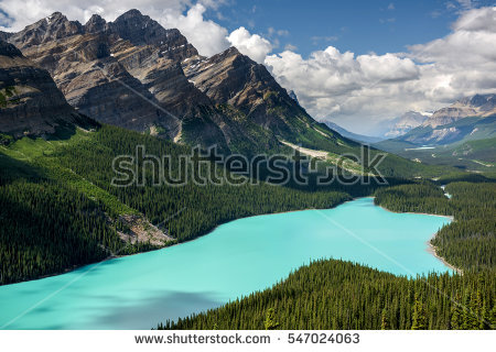 Lake Peyto Stock Photos, Royalty.
