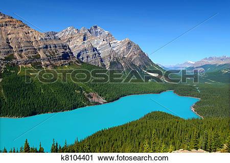 Stock Photography of Peyto Lake of Canada k8104401.