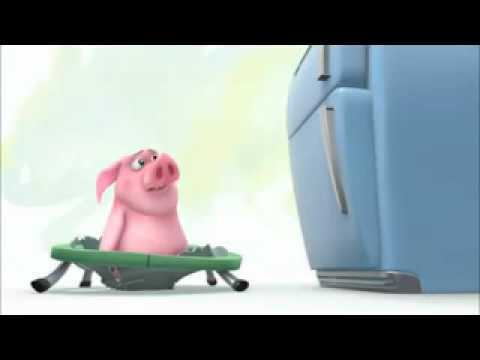schwein will an kekse.