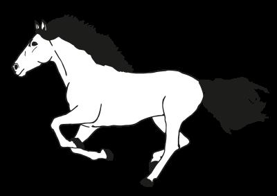 Pferd PNG.