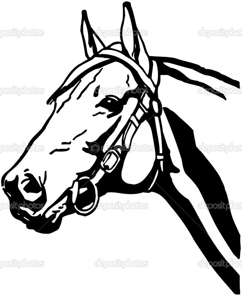 Pferdekopf — Stockvektor © RetroClipArt #55673241.