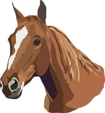 Pferdekopf clipart.
