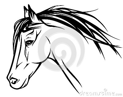Horse Head Vector Stock Images.