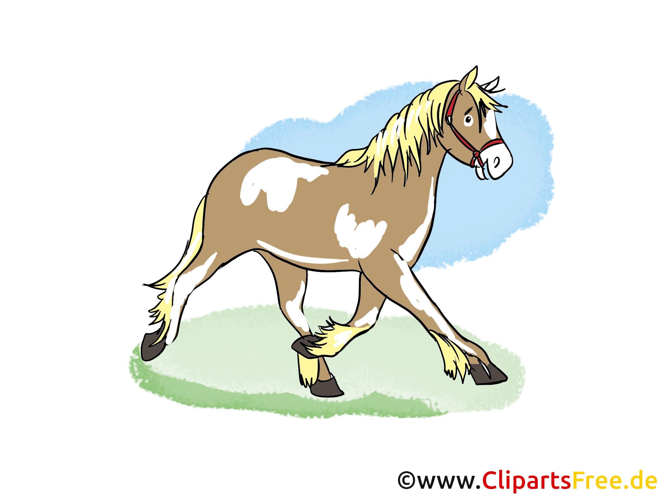 Pferde Bilder, Cliparts, Cartoons, Grafiken, Illustrationen, Gifs.